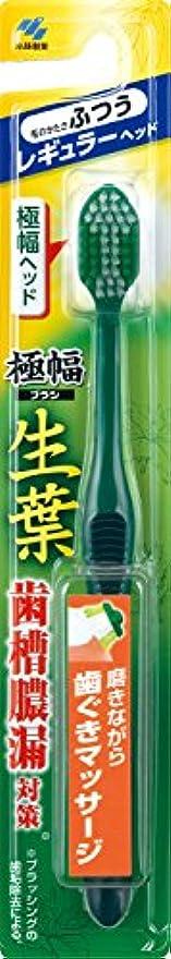 理容師スパン広々とした生葉(しょうよう)極幅ブラシ 歯ブラシ レギュラーヘッド ふつう