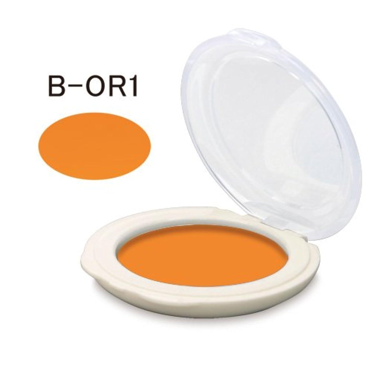 介入する出版工夫する舞台屋アイカラー(マット系) (B-OR1)
