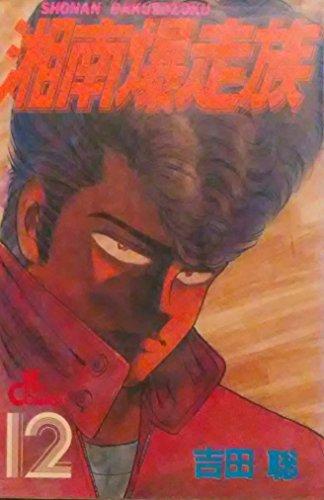 湘南爆走族 12 (ヒットコミックス)の詳細を見る