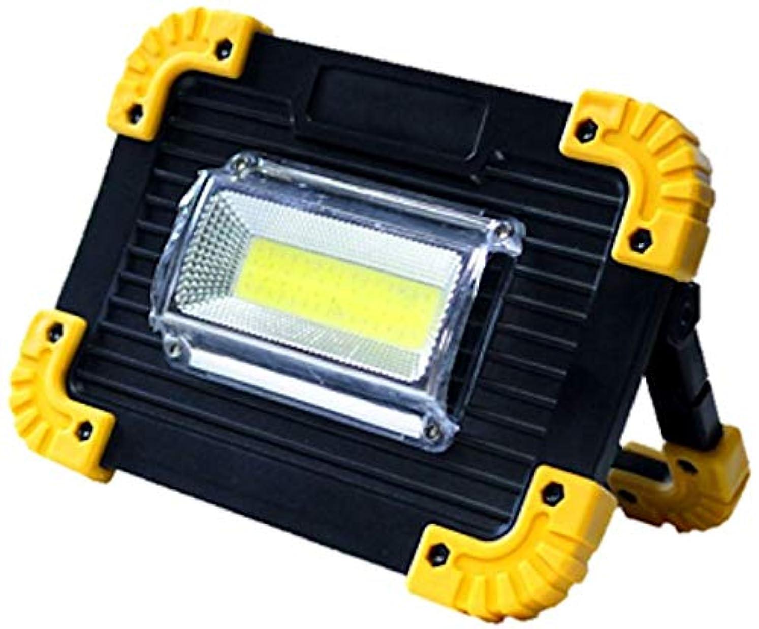 レルム狂った所持2WAY 充電式COB LED灯光器 20w