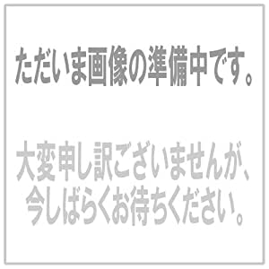 モンスターハンター ステンレスマグカップ(オトモアイルー)