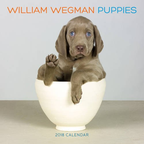 William Wegman Puppies 2018 Wall Calendar (Calendars 2018)