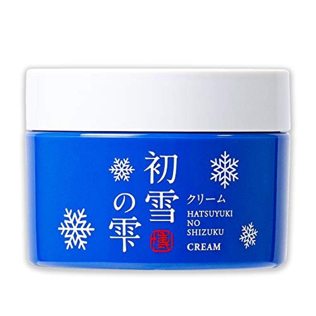 決定記念品キャッシュ初雪の雫 オールインワン 保湿 クリーム 50g 約1~1.5ヶ月分 [プラセンタ ヒアルロン酸 セラミド アルブチン ビタミンC ]