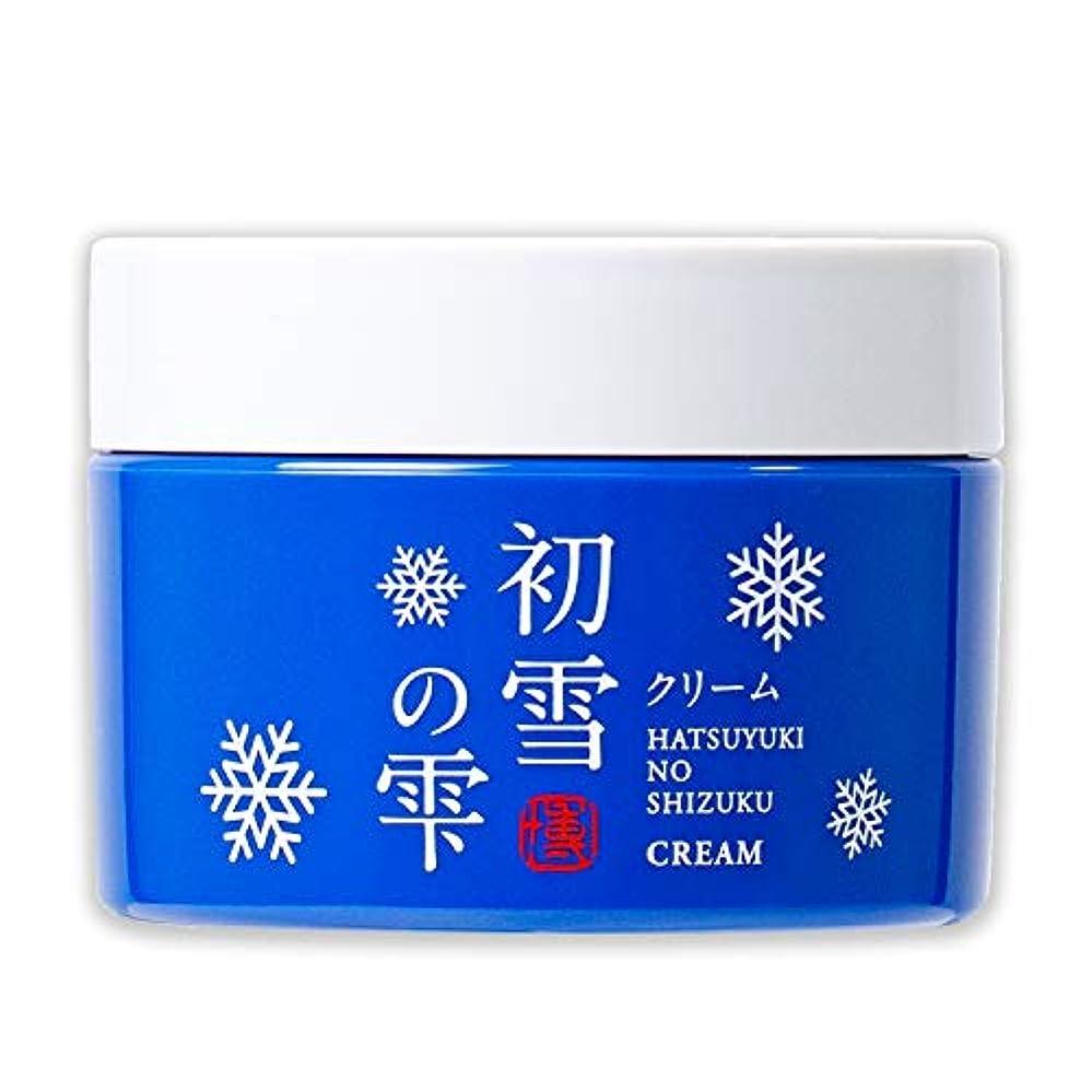 スラム同化する消費初雪の雫 オールインワン 保湿 クリーム 50g 約1~1.5ヶ月分 [プラセンタ ヒアルロン酸 セラミド アルブチン ビタミンC ]