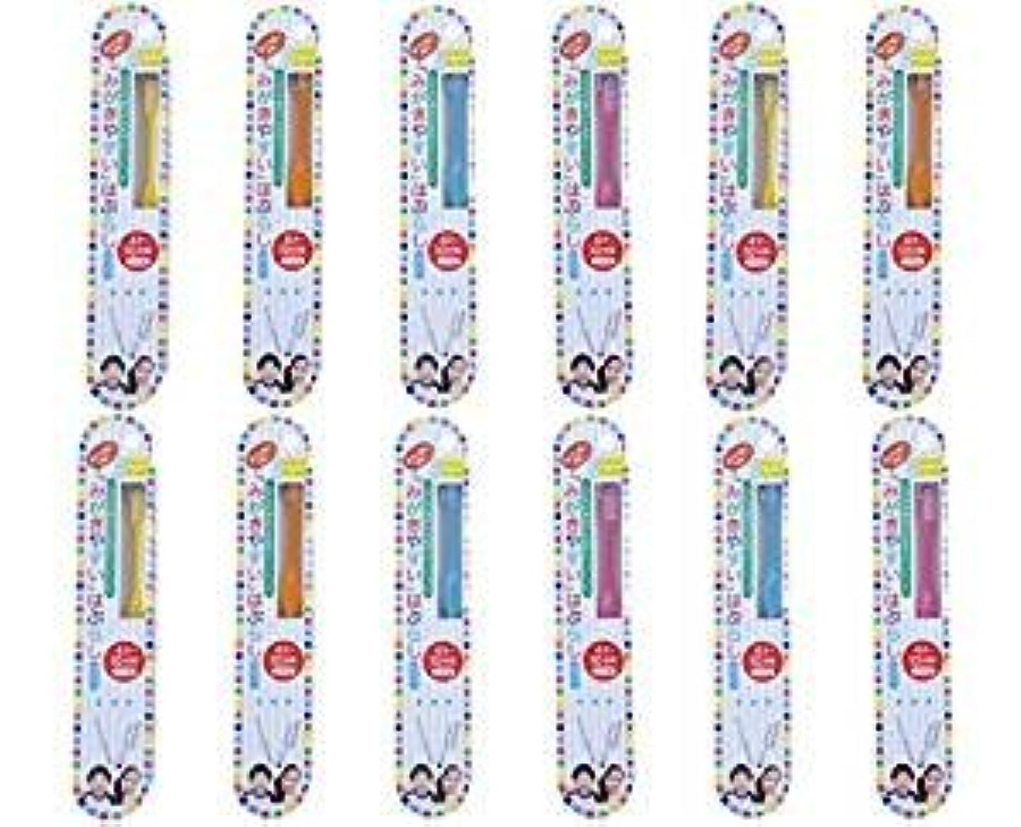 開いた枯れる熱意歯ブラシ職人田辺重吉 磨きやすい歯ブラシこども用 LT-10 (12本組)