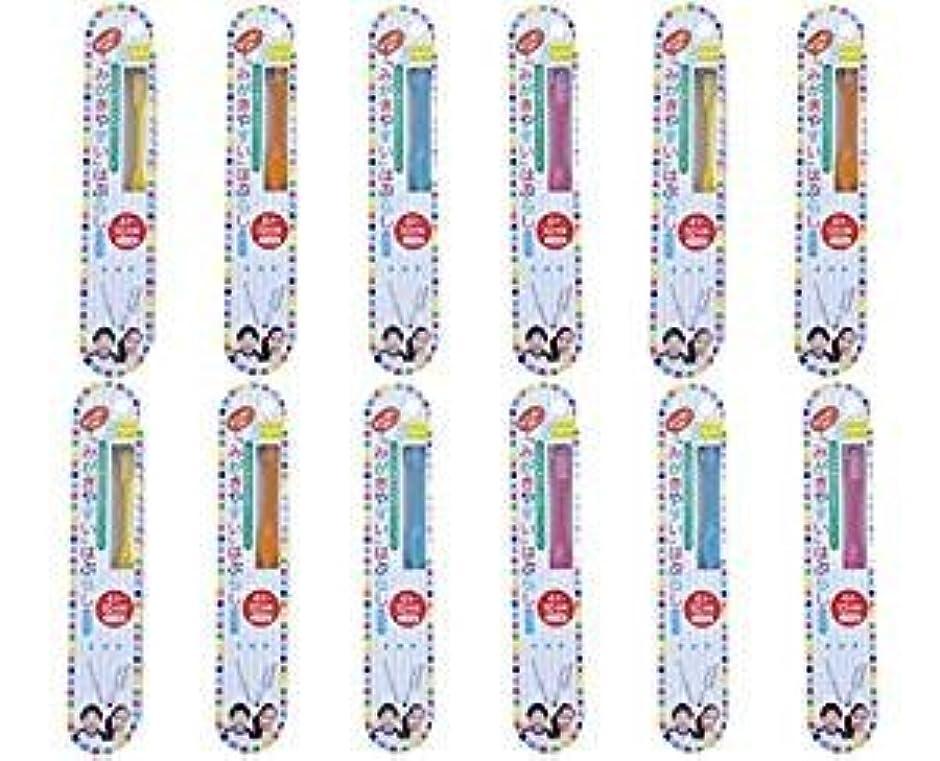前者ドール同行する歯ブラシ職人田辺重吉 磨きやすい歯ブラシこども用 LT-10 (12本組)