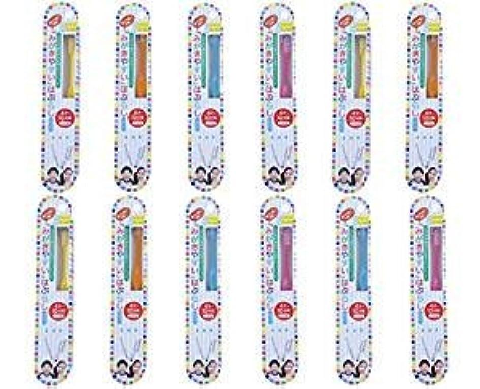 素晴らしい感嘆刺激する歯ブラシ職人田辺重吉 磨きやすい歯ブラシこども用 LT-10 (12本組)