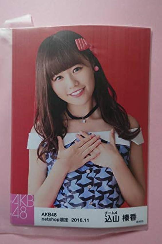 姓で出来ている決定的AKB48 個別生写真5枚セット 2016.11 山榛香