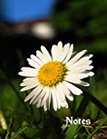 Notes: A large notebook with a pretty daisy cover and wide lined pages