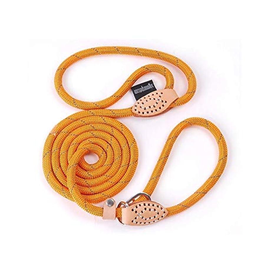 許容できる引き付ける少ないリザイペット 大型犬用の反射型犬用リーシュペット製品首輪ハーネス犬用アクセサリー動物用調節可能な犬用リーシュPY0237 (Color : Orange py0237, Size : M diameter 0.8cm)