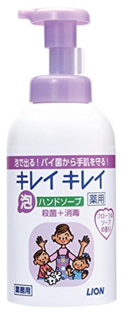 苦味名義で防腐剤キレイキレイ 薬用泡ハンドソープ フローラルソープの香り 550ml