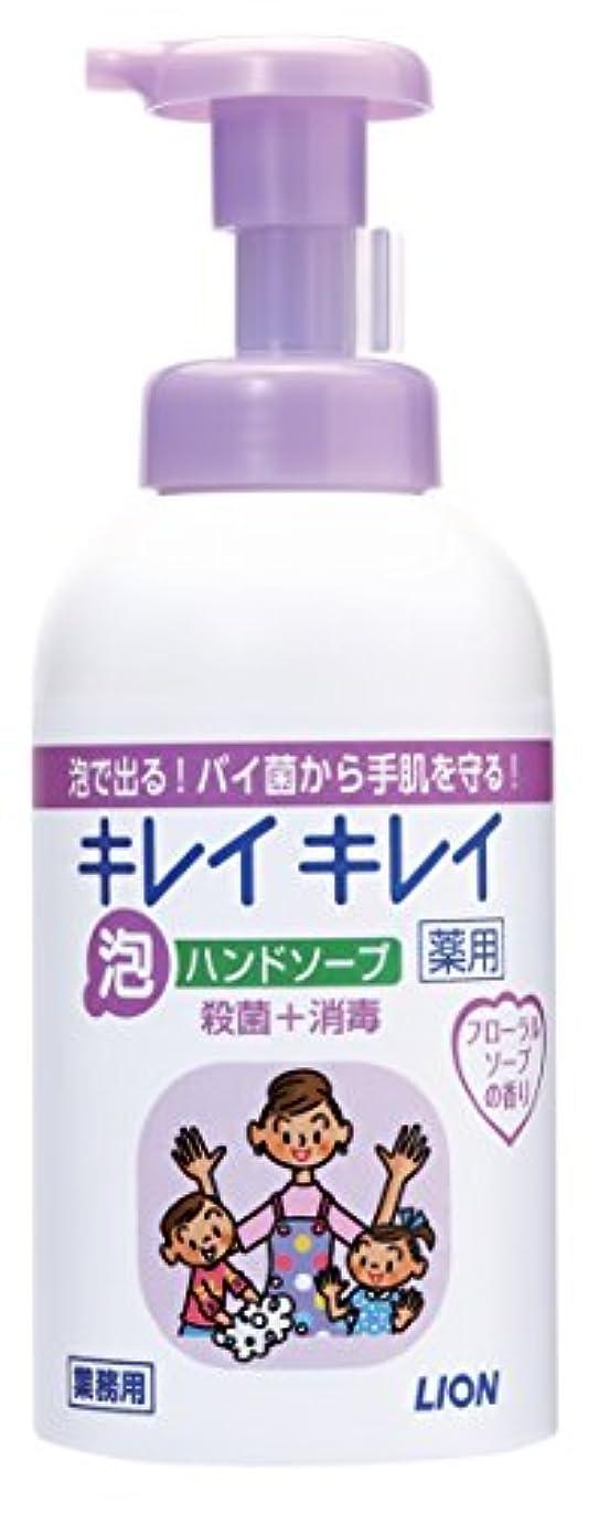 写真役割側溝キレイキレイ 薬用泡ハンドソープ フローラルソープの香り 550ml