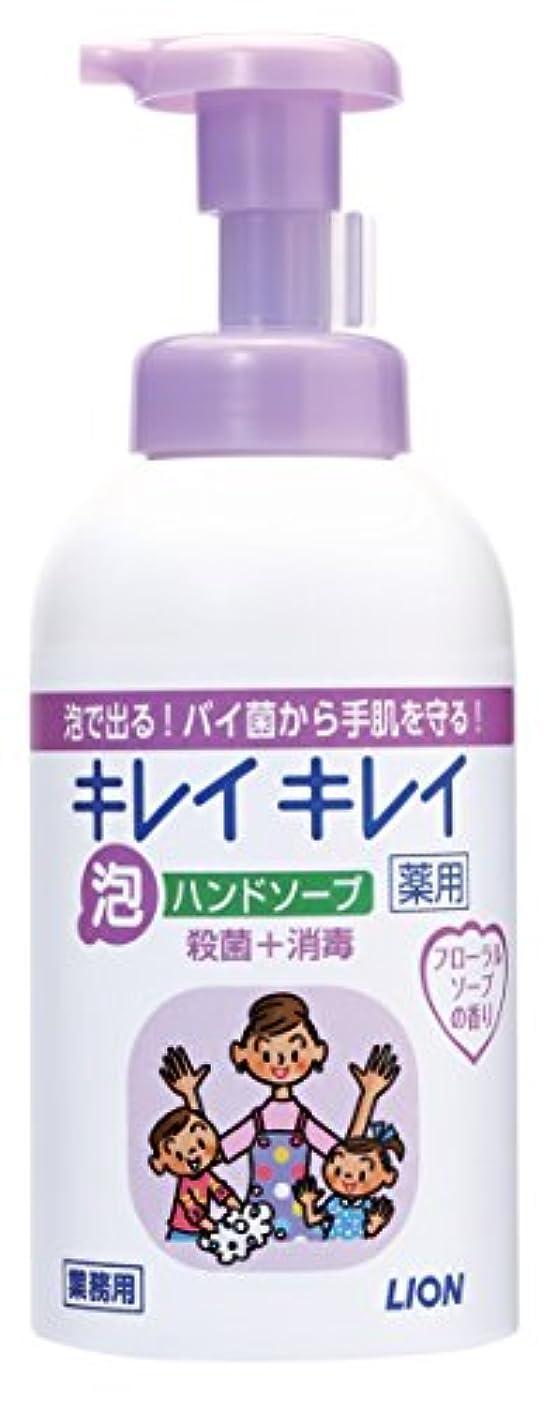 チャーター調停するキャラクターキレイキレイ 薬用泡ハンドソープ フローラルソープの香り 550ml