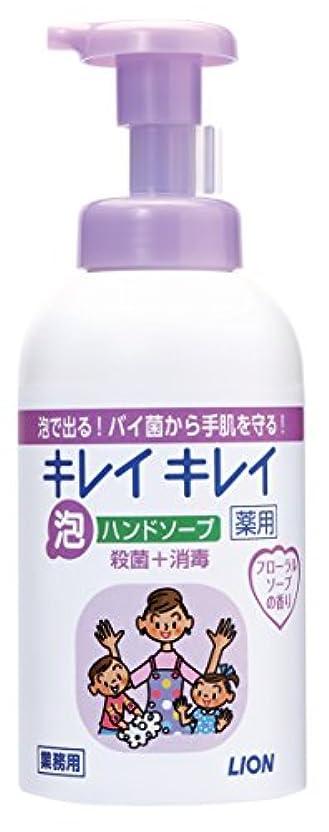 タブレット繊毛脇にキレイキレイ 薬用泡ハンドソープ フローラルソープの香り 550ml