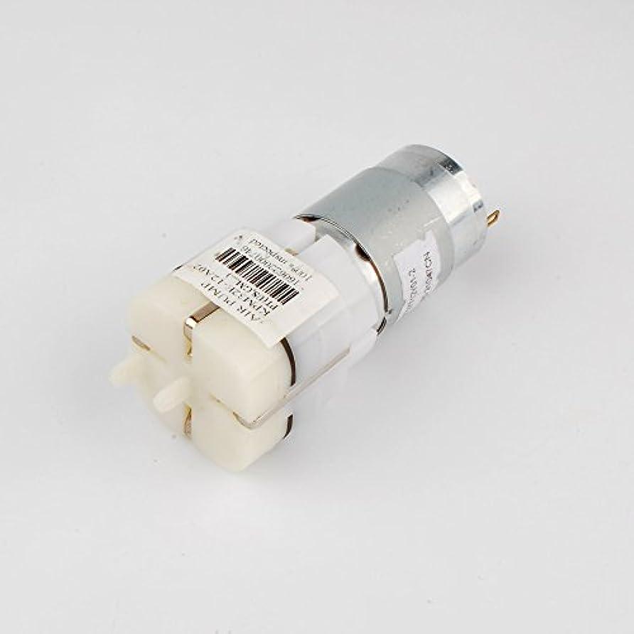 解任放課後解説Newone 12V DC 0.37A 強力なエアーポンプ 双出气口 ポンプ