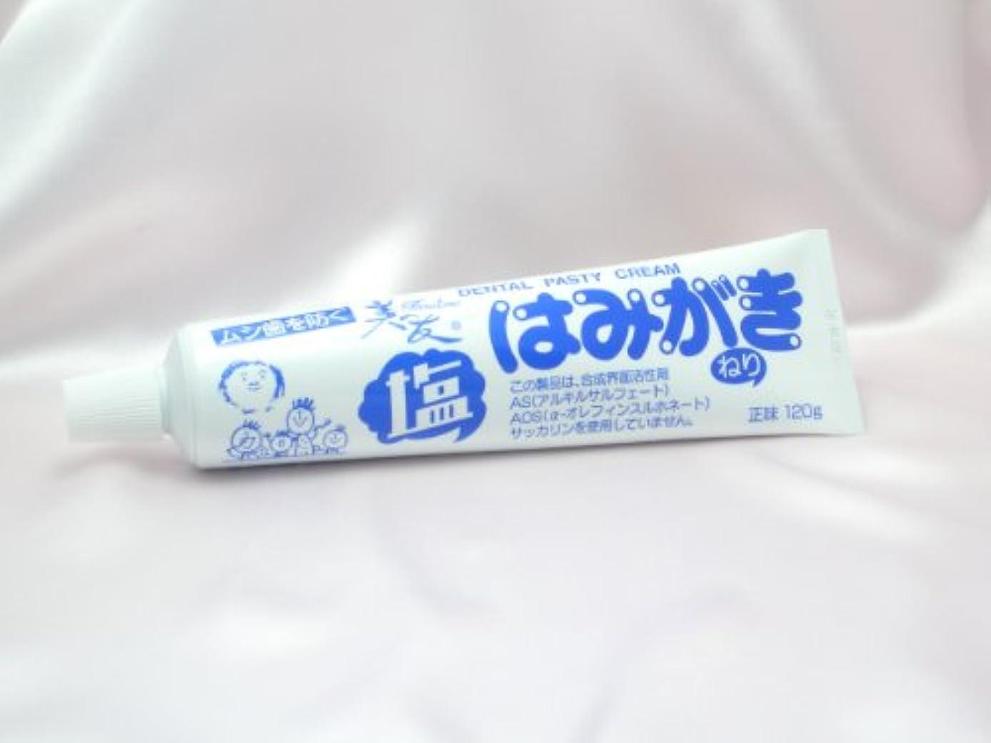 失態四分円境界【不動化学】塩はみがき120gお得用3本セット