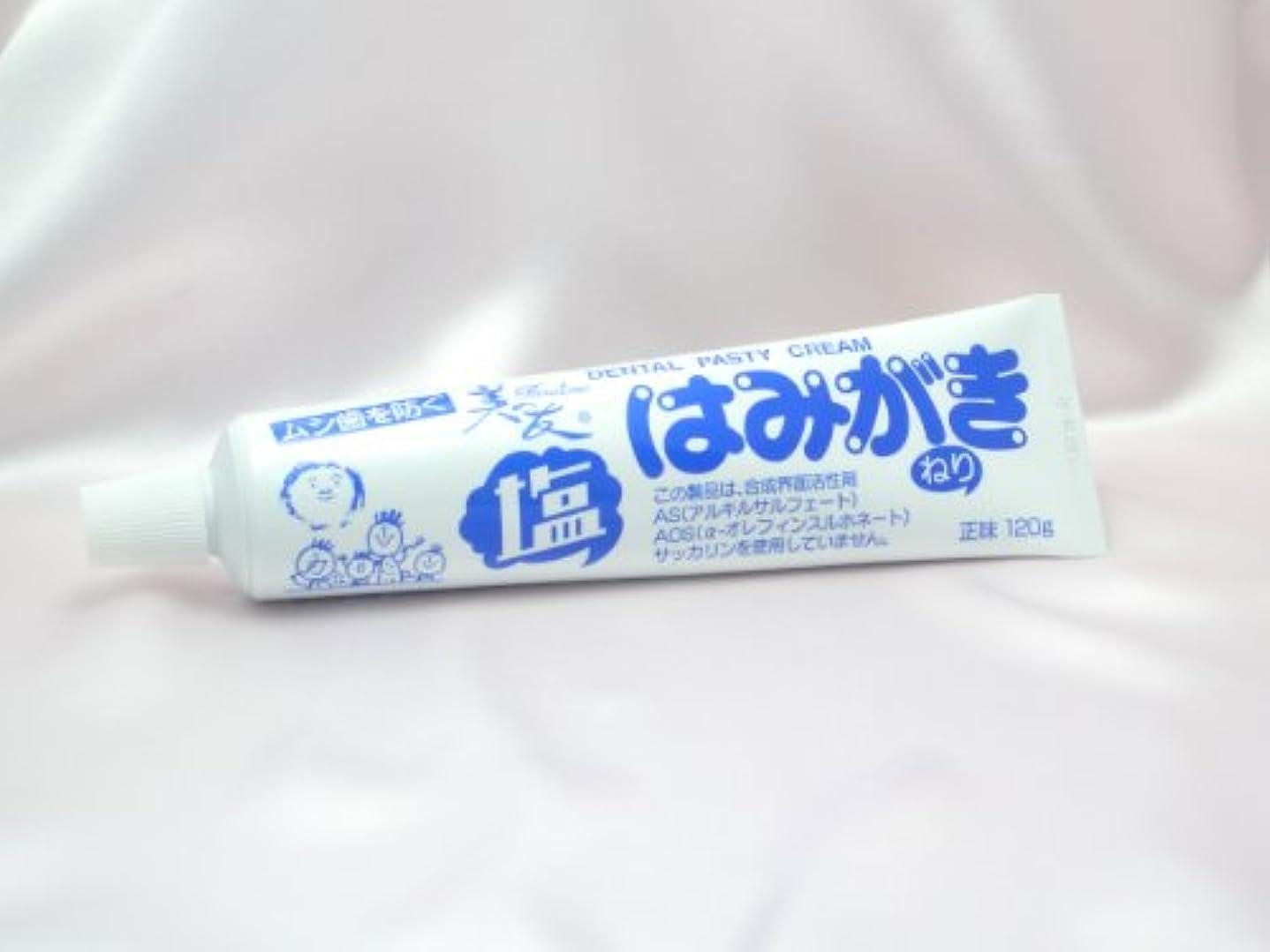 調整後世適度に【不動化学】塩はみがき120gお得用3本セット