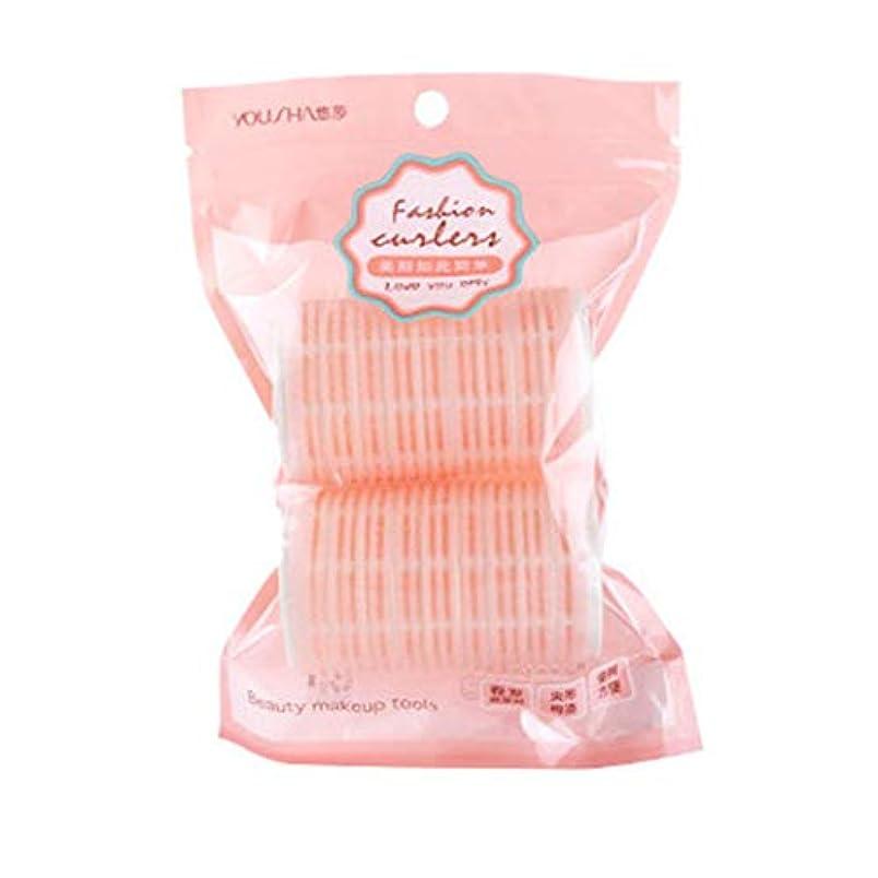 ポンド爵どうしたのDavine 2パックの前髪用カーラーマジックテープカーラー (Pink)