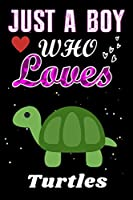 Just a Boy who loves Turtles: Turtles Lover notebook or dairy, Perfect Turtles lovers Notebook gift for Boy
