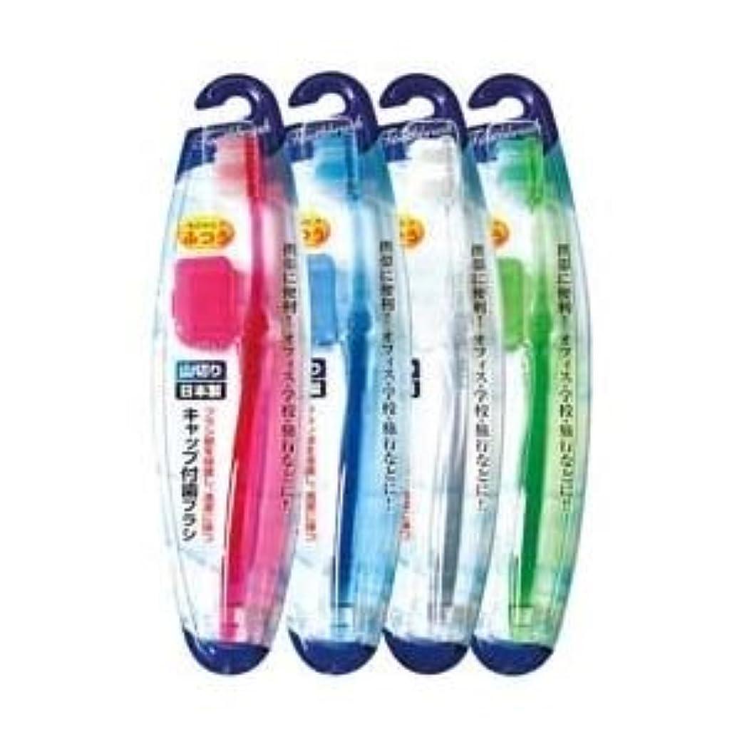 改革保有者ほとんどの場合キャップ付歯ブラシ山切りカット(ふつう)日本製 【12個セット】 41-209 ds-1724257