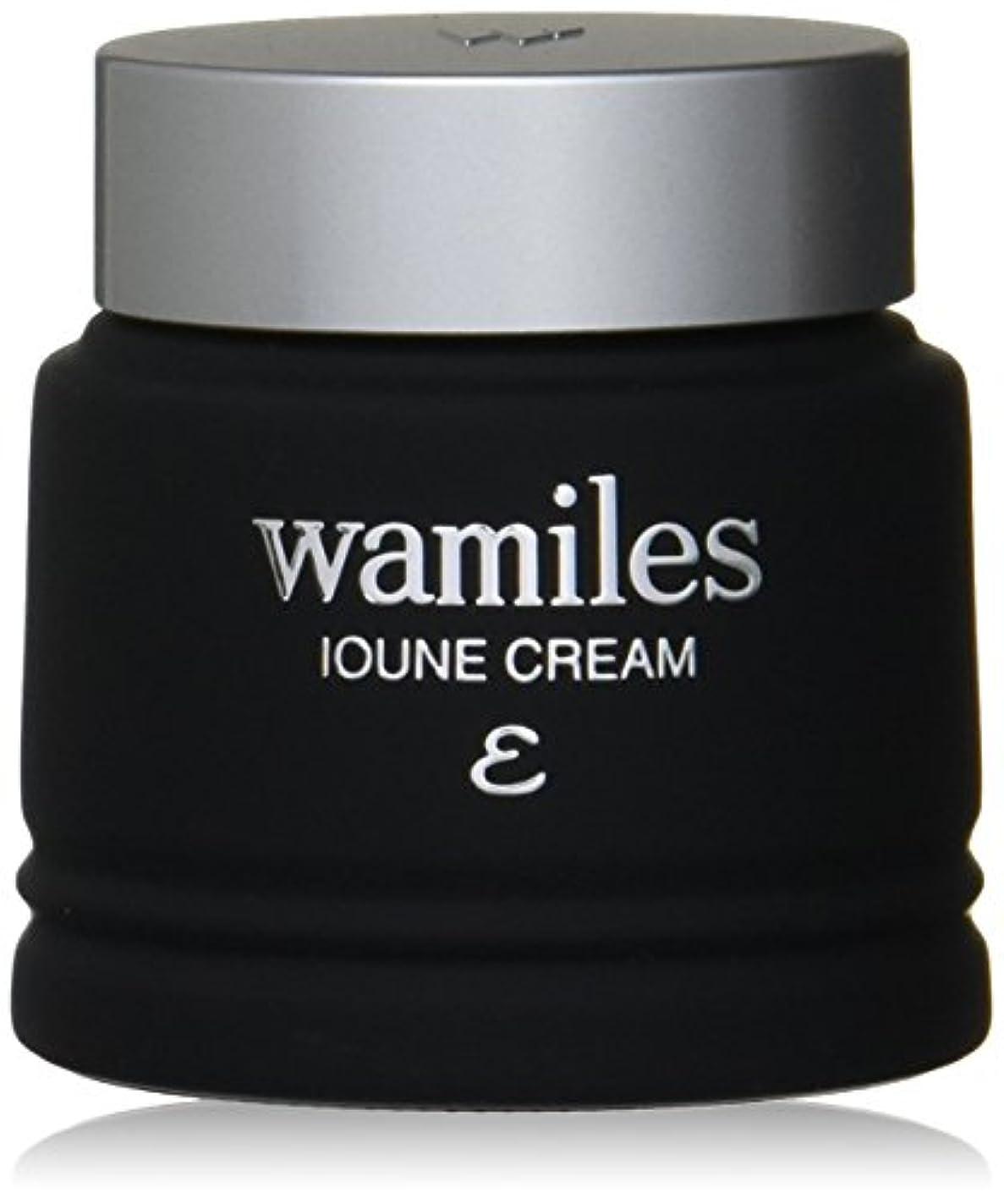 鉛筆半導体塩wamiles/ワミレス ベーシックライン イオーヌ クリーム (全ての肌用) 53g