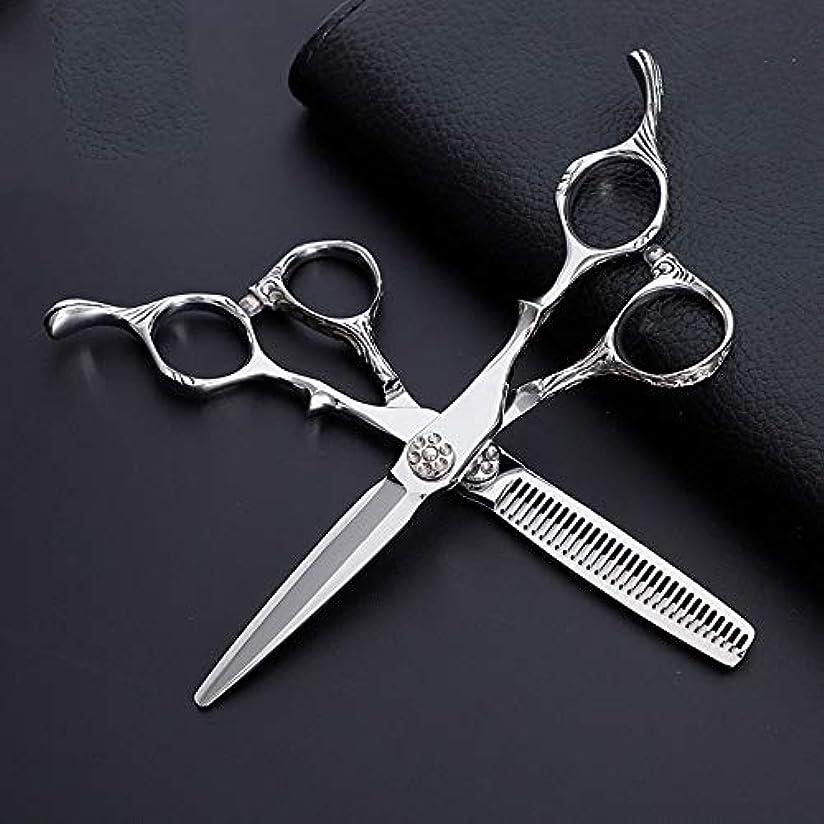 フライト信念あまりにも6インチ美容院プロフェッショナル理髪セットハイエンド理髪はさみ、フラットはさみ+歯はさみ モデリングツール (色 : Silver)
