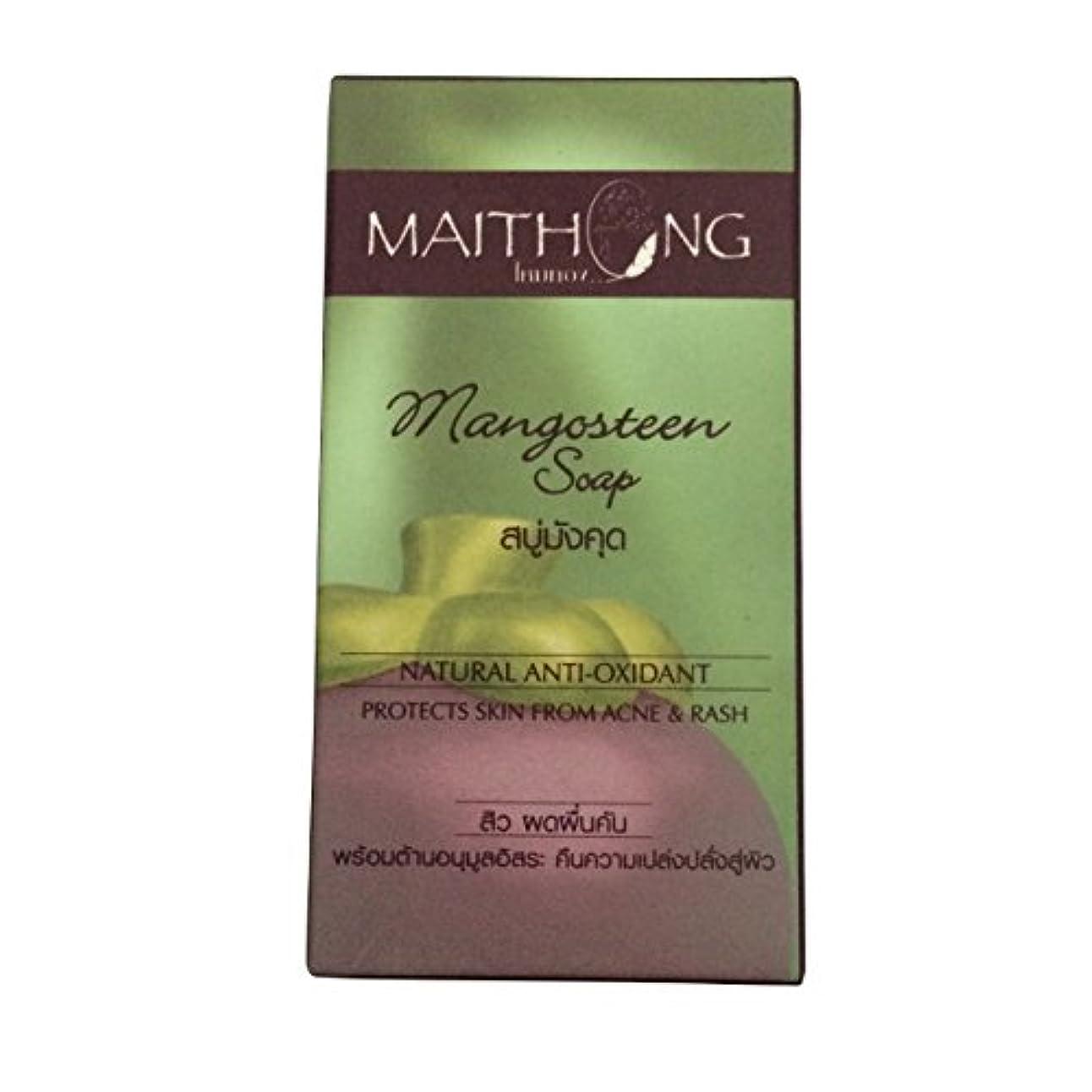 絵印象派昆虫(マイトーン)MAITHONG マンゴスチン 石鹸 ソープ