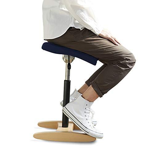 バランスシナジー スクエア 通常 ネイビー 腰痛対策 姿勢改善 椅子 バランスチェア 大人用
