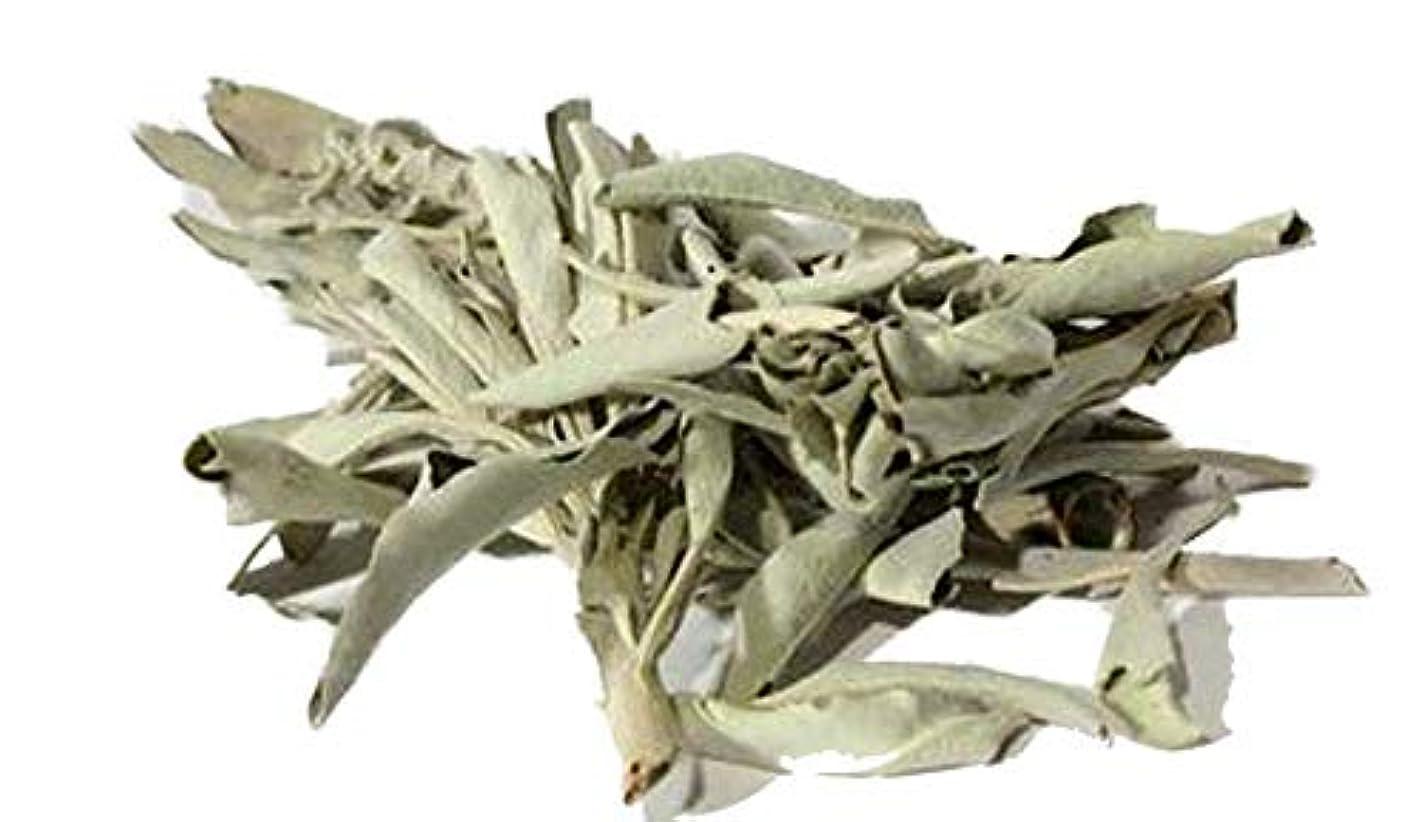 気味の悪い印象お茶カリフォルニアホワイトセージスマッジクラスタIncenseバルク( 1 / 4ポンド) with 1つのロールswift-liteチャコールand a 6
