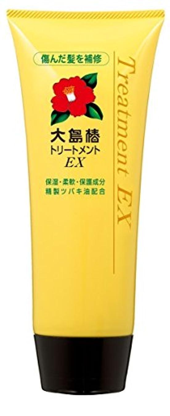ループヒントクレデンシャル大島椿 EXトリートメント (洗い流すタイプ) 200g