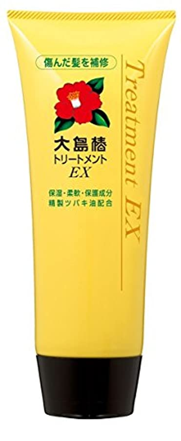 ワイヤー縁石振る大島椿 EXトリートメント (洗い流すタイプ) 200g