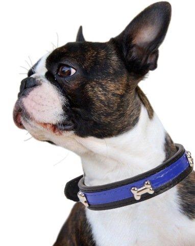 [cross] 犬 猫 ペット 小型犬 中型犬 用 首輪 スタッズ PU レザー 皮 革 ソフト (ブルー)