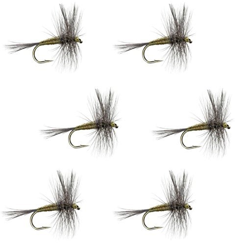 The Fly Fishing PlaceブルーWingedオリーブBWOクラシックTrout Dry Fly Fishing Flies–セットof 6Fliesサイズ16