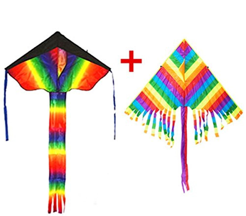 BOYU凧、2パック美しいカイトKiteハンドルと文字列Easy to Fly forシンプル操作for Children Kite