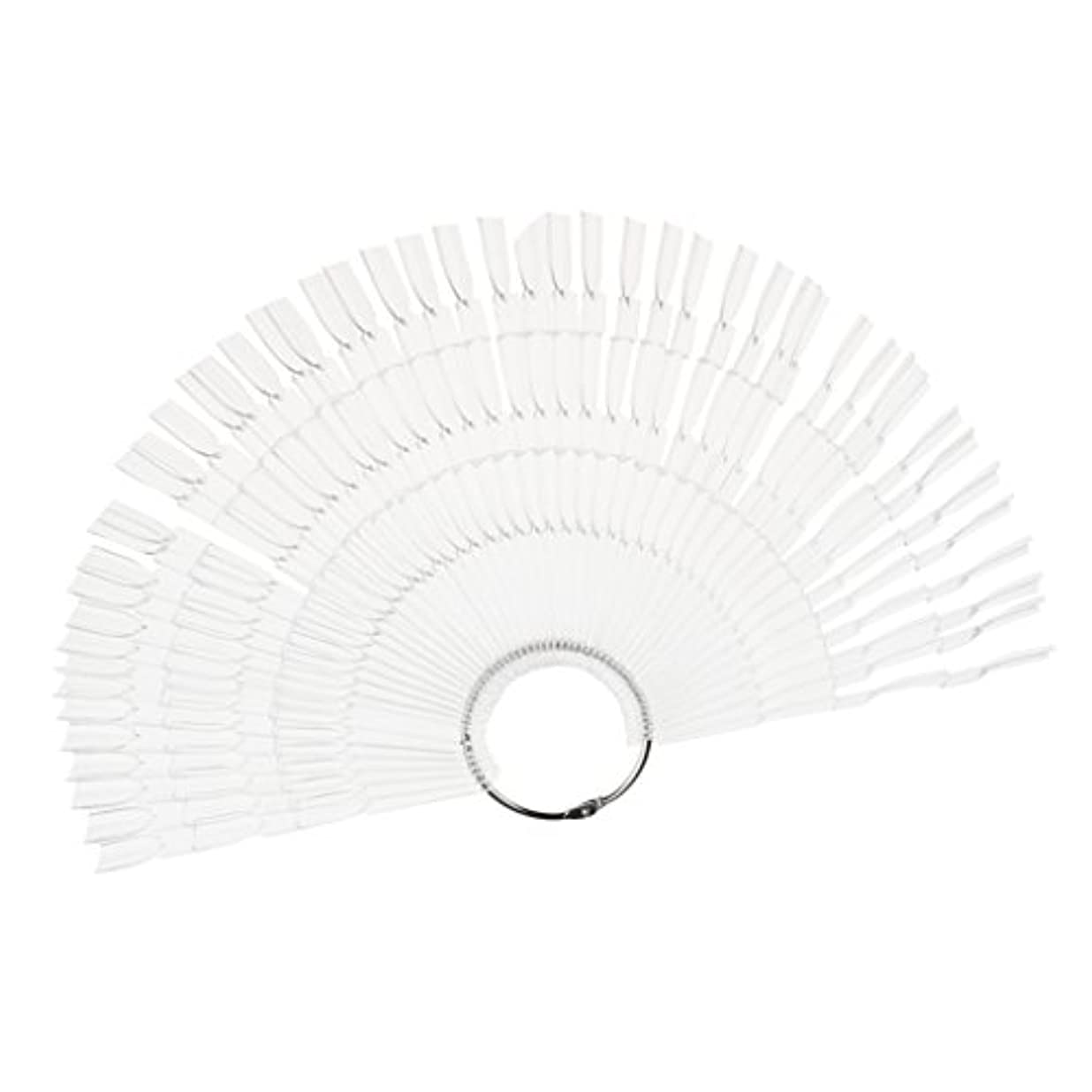 特権的レクリエーションあごネイルアート カラー表示チャート 約50個の扇形ヒント ネイルパレット 2タイプ選べる - クリア