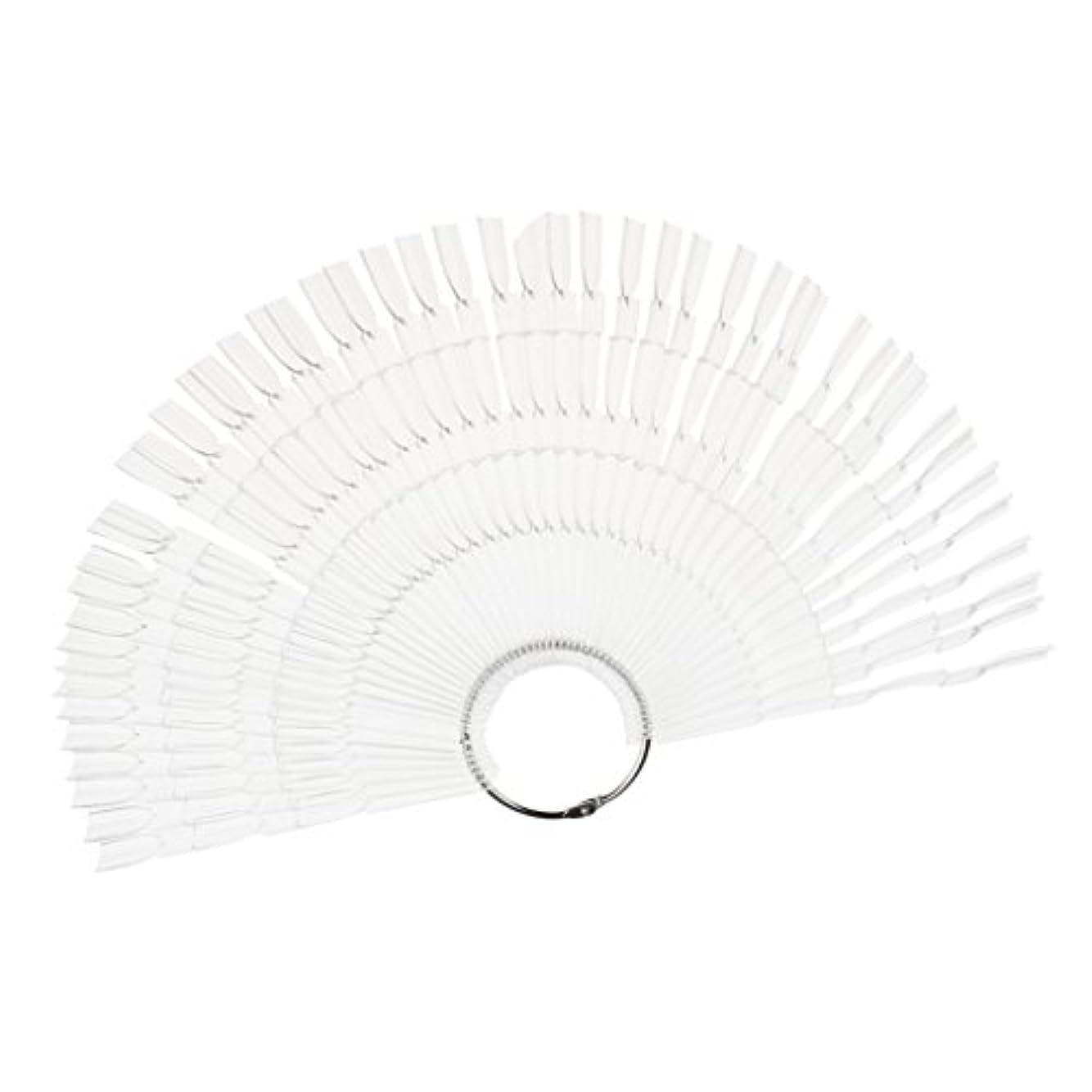 放棄する自慢封建ネイルアート カラー表示チャート 約50個の扇形ヒント ネイルパレット 2タイプ選べる - クリア