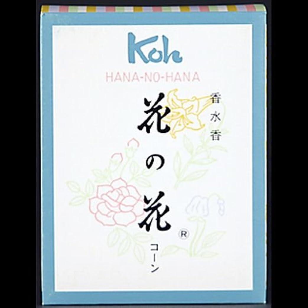 スキーちっちゃい有料【まとめ買い】花の花 コーン 30個 ×2セット