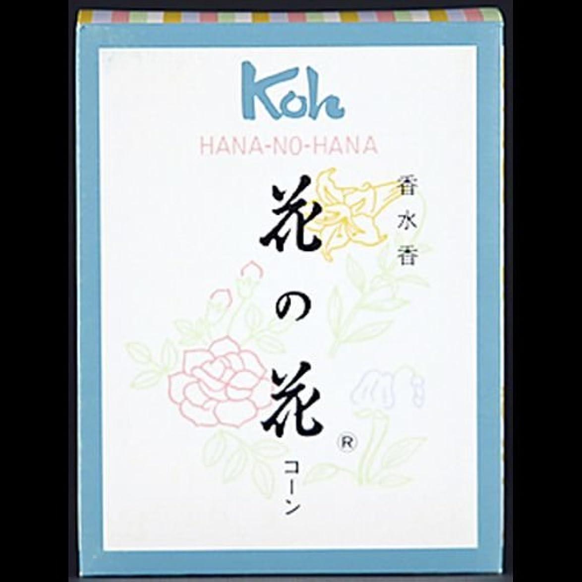 キーとトンネル【まとめ買い】花の花 コーン 30個 ×2セット