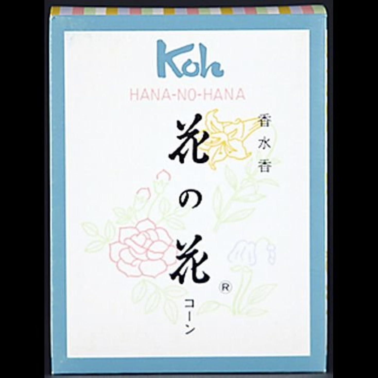 吹雪静脈似ている【まとめ買い】花の花 コーン 30個 ×2セット