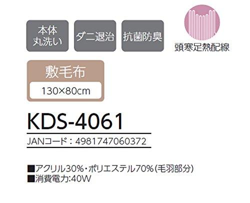 コイズミ 電気毛布 水洗いOK 130×80cm KDS-4061(敷タイプ130×80cm)