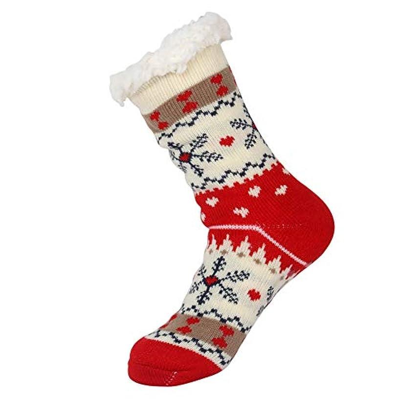 教育学みぞれ警告するスリッパソックス、ぬいぐるみの裏地ファジィソックス、冬の女性の滑り止めフリース裏地スリッパソックス、女性のための柔らかい居心地の良い綿ニットソックス女の子クリスマスクリスマスギフト屋内