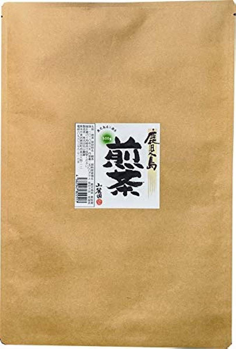 エンディングバーチャルパトロールお茶の山麓園 鹿児島産煎茶 業務用 ゆたかみどり二番茶使用 500g