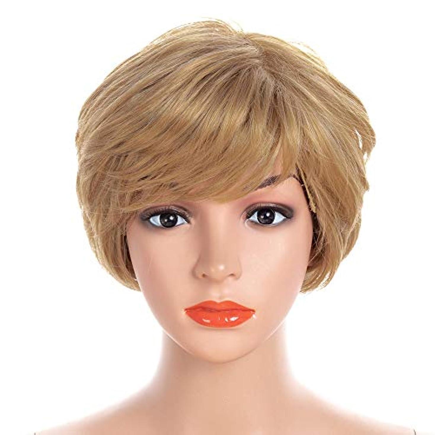 漏れとても多くの中庭YOUQIU 無料ヘアーネットコスプレパーティードレスウィッグでは人工毛ボブショートカーリーブロンド髪 (色 : Blonde, サイズ : 30cm)