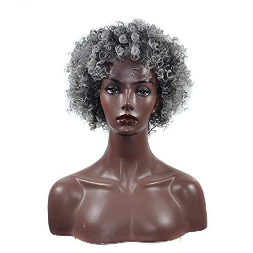 刺します激しいクリップSRY-Wigファッション 黒人女性のための近視黒おむつ巻き毛かつら黒合成アフロ巻き毛かつら