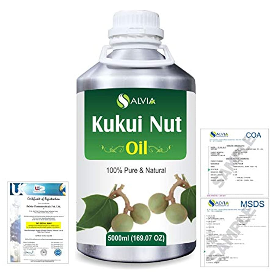 熟読するミケランジェロこするKukui Nut (Aleurites Moluccans) Natural Pure Undiluted Uncut Carrier Oil 5000ml/169 fl.oz.