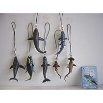 地球生命紀行マグロ シーラカンス 海の支配者達 フル 7種 :全7種 1 ネコザメ 2 シュモクザメ 3 メバチマグ
