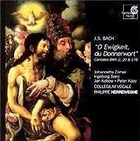 Bach: Cantatas for Trinity - O Ewigkeit, du Donnerwort (BWV 20, 2, 176) / Herreweghe (2003-03-03)