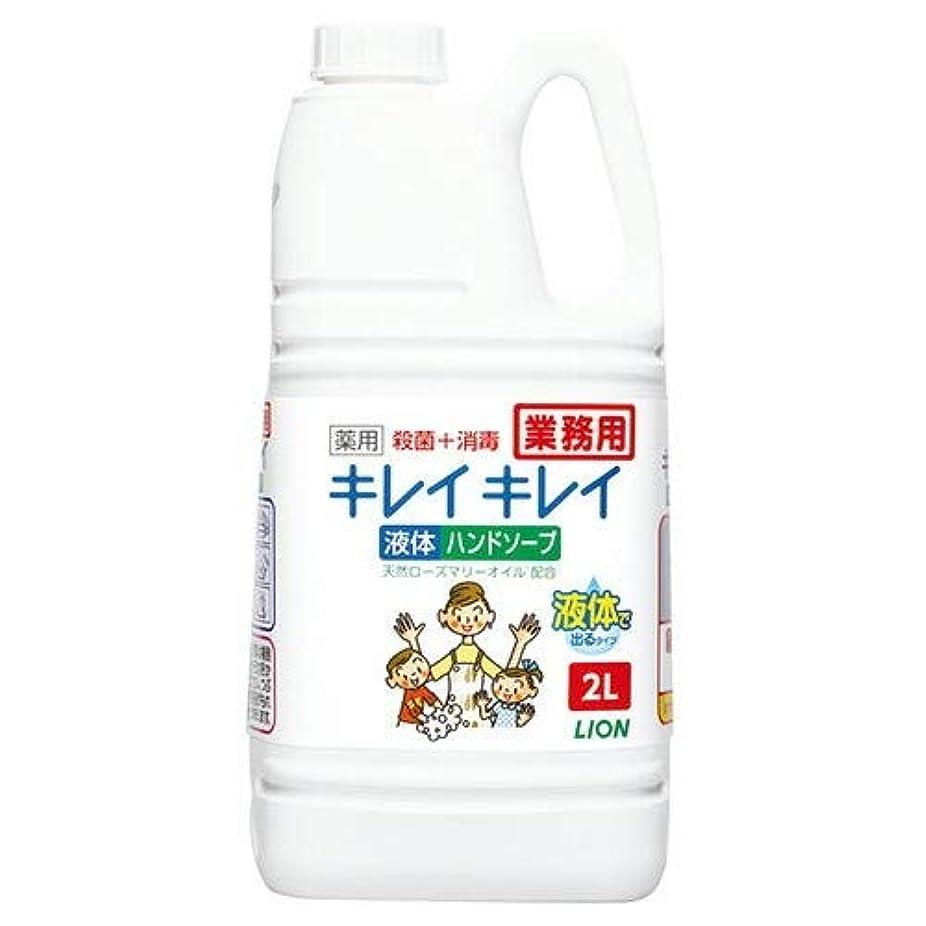 【特大サイズ】ライオン キレイキレイ 薬用ハンドソープ 業務用 2L 医薬部外品 100%植物性洗浄成分使用×6点セット (4903301358008)