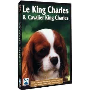 Le King Charles & Cavalier King Charles