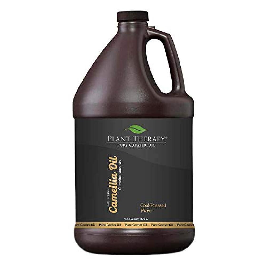 奨励します過半数くつろぐツバキ種子キャリアオイル。 1ガロン。アロマセラピー、エッセンシャルオイルやマッサージ用基油。